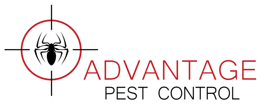 We're Growing at Advantage Pest Control